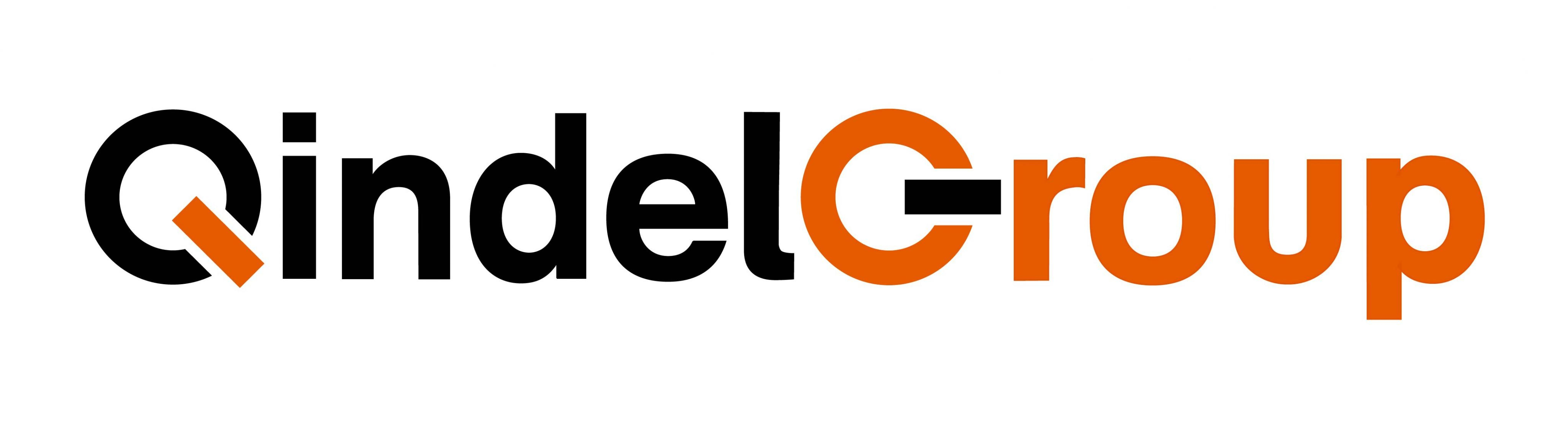 Logo QINDEL